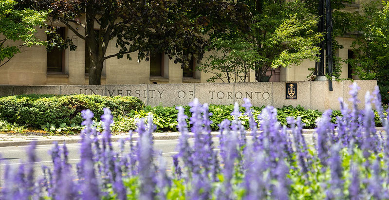 Purple flowers on St. George campus. U of T name engraved in stone entrance marker.